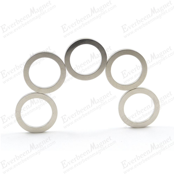Ring Shaped NdFeB Magnet